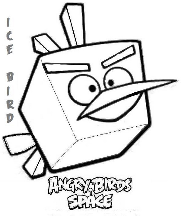 Angry Birds8